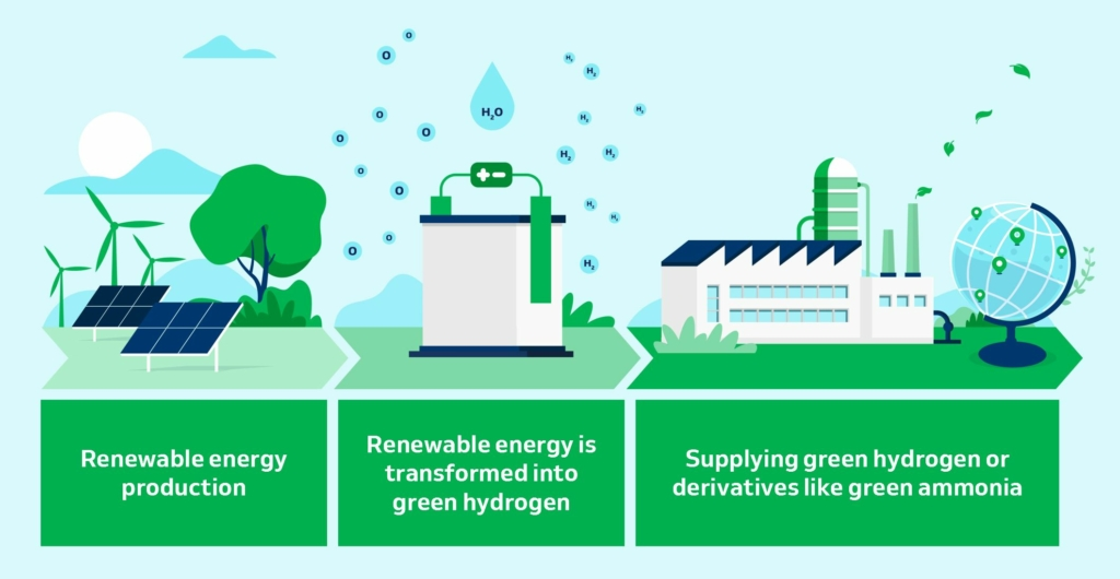 HYPORT® Duqm Green hydrogen/ammonia infographic from DEME Concessions.